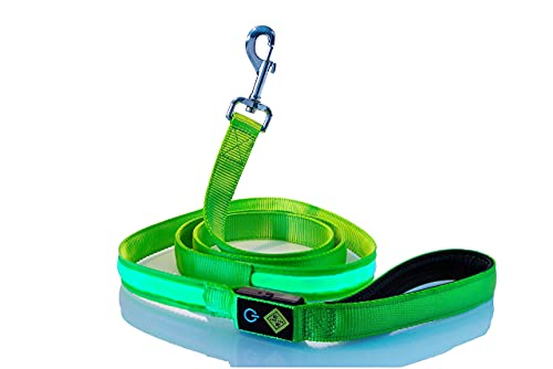 Rockro LED Hundeleine 180 cm USB wiederaufladbar Leuchtend wasserdicht - Perfekte Ergänzung für alle Leuchthalsbänder - Kleine und Große Hunde
