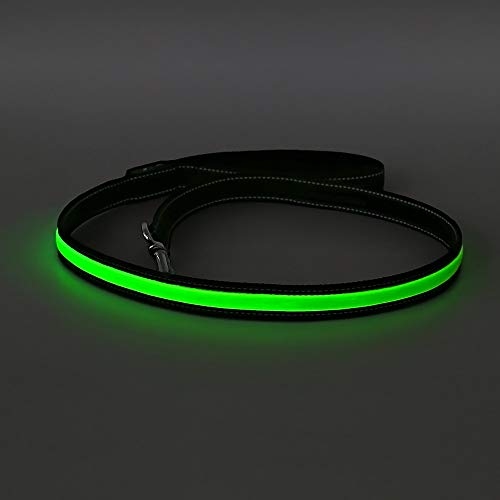 HOTDOG Extra helle LED-Hundeleine, USB wiederaufladbar, wetterfest, hält Ihren Hund nachts auf Spaziergängen sicher (grün)
