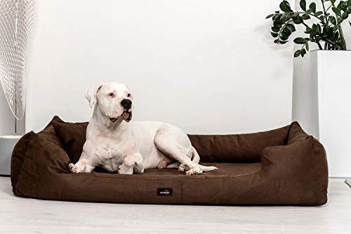 tierlando® Orthopädisches Hundebett Pluto Ortho VISCO Viscoschaum aus weichem Velours Größe: PLV6 160x110 cm | B Farbe: 01 Braun