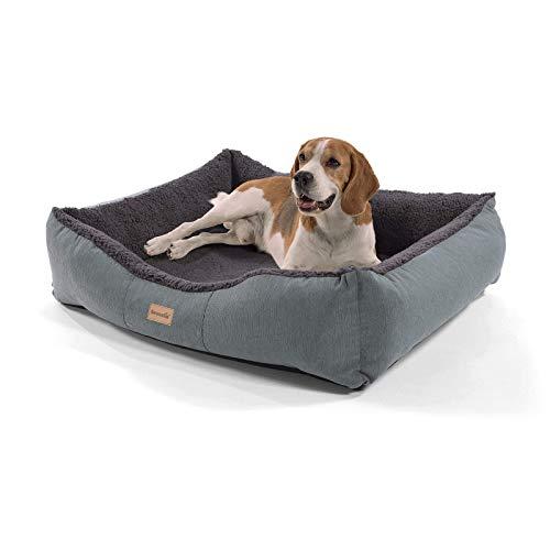 brunolie Emma mittlerer Hundekorb in Dunkelbraun, waschbar, hygienisch und rutschfest, luftiges Hundebett mit Kissen zum Kuscheln, Größe M (80 x 70 x 20 cm)