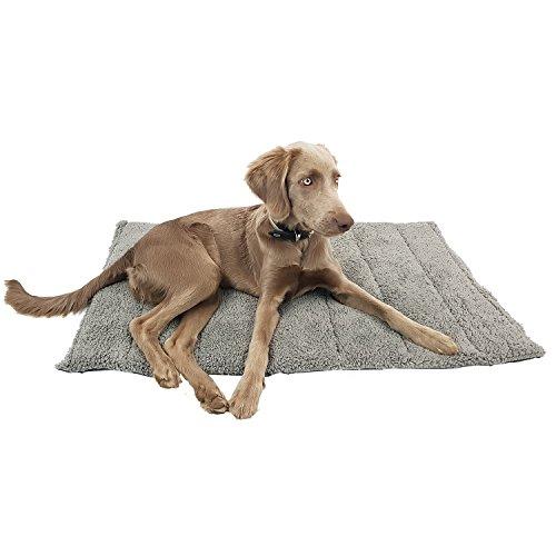 DILUMA Hundedecke Orkney M 100x65 cm - plüschig weiche Haustier-Reisedecke für unterwegs - EIN- und ausrollbare Universaldecke für Hunde und Katzen