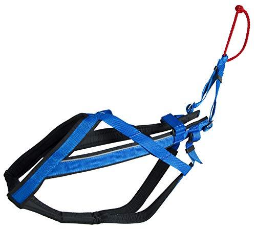 Neewa Racing Harness