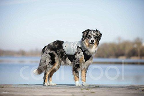 canicool Kühlweste für Hunde, effektive Kühlung, 100% trocken, reduziert Umgebungstemperatur um bis zu 15°C (M, Silber)