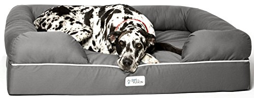 PetFusion Ultimate Jumbo XX Großes wasserdichtes Memory Foam-Hunde/Katze Bett (127 x 101.6 x 33 cm; grau). Massiver 15cm Schaum. [Ersatzbezüge & passende Decken ebenfalls erhältlich]