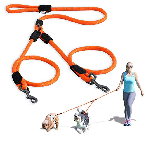 PAWTITAS Doppelleine fur Zwei Hunde   Hundeleine für Zwei Hunde ideal zum Trainieren und Gehen   Leine fur Hund fur Klein Hund und Grosse Hund - Mittelgroßer und Große Orange Hundeleine