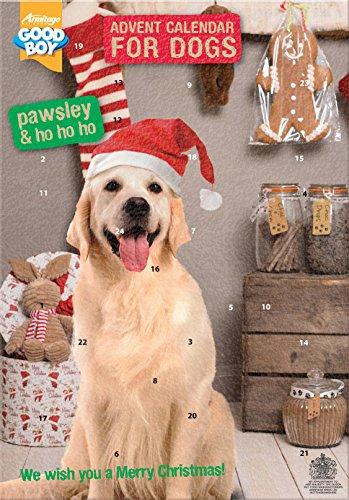 Pawsley Hunde-Adventskalender
