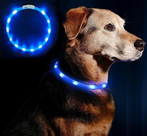 Anicoll LED Leuchthalsband...