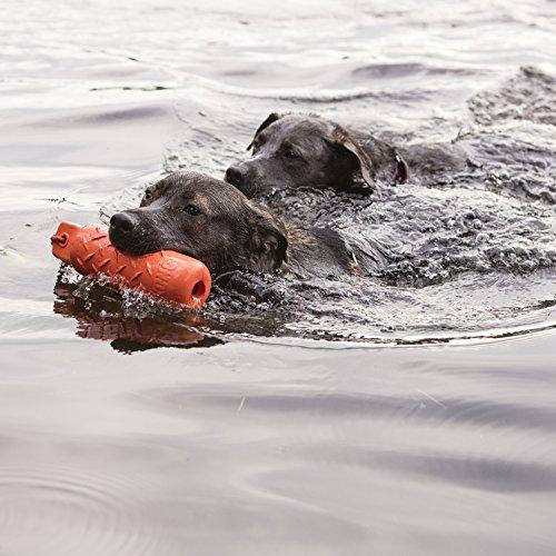KONG – Dog Training Dummy – Zum Spielen, Trainieren und Apportieren im Wasser – Große Hunde