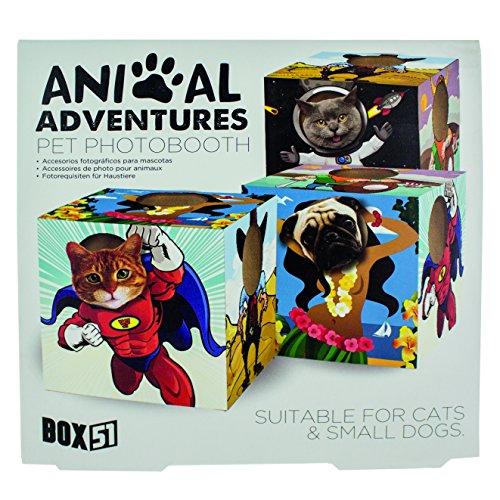 Foto-Accessoire für Kleinhundehalter