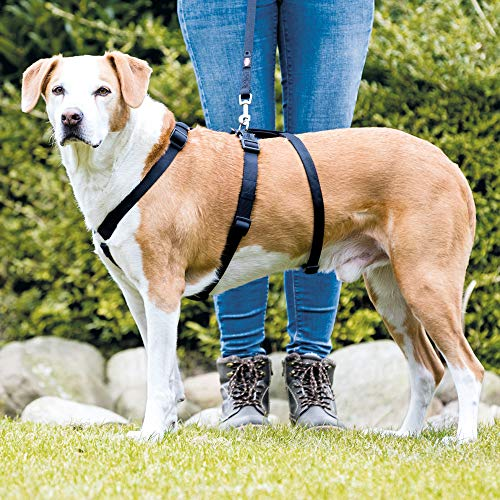 TRIXIE Stay Harness