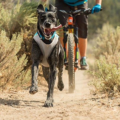Ruffwear Leichte Kühl-Weste für Hunde, Mittelgroße Hunderassen, Größe: M, Türkis (Blue Lagoon), Jet Stream, 0545-401M