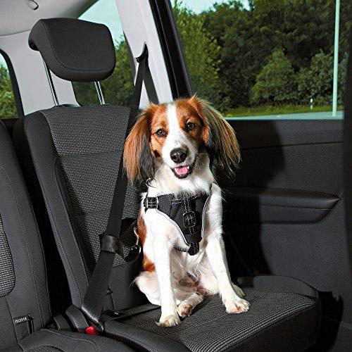 Trixie Auto-Geschirr Dog Protect