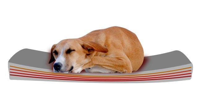 Normaler Schaumstoff Hundebett